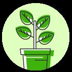 Reforestación y horticultura